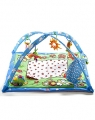 Gymini Duet Double Sided Play Mat & Music