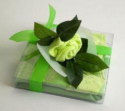 Baby Buds Summertime Gift Box - Frangipani