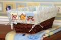 Winnie the Pooh Soft & Fuzzy Basket Liner